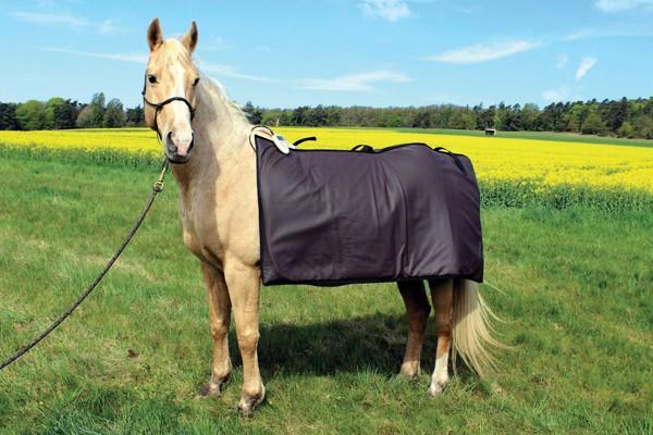 Mieten - Magnetfelddecke Pferd und Hund inklusive Zubehör