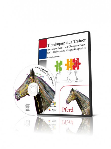 Tierakupunktur Trainer Pferd