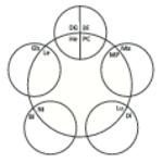 5-Elemente Stempel TCM