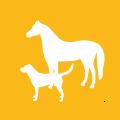 icon-lernhilfe-therapie-pferd-hund-tiere