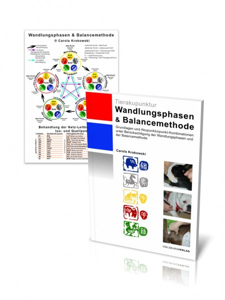 Wandlungsphasen & Balancemethode