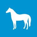 icon-magnetfeld-therapie-pferd