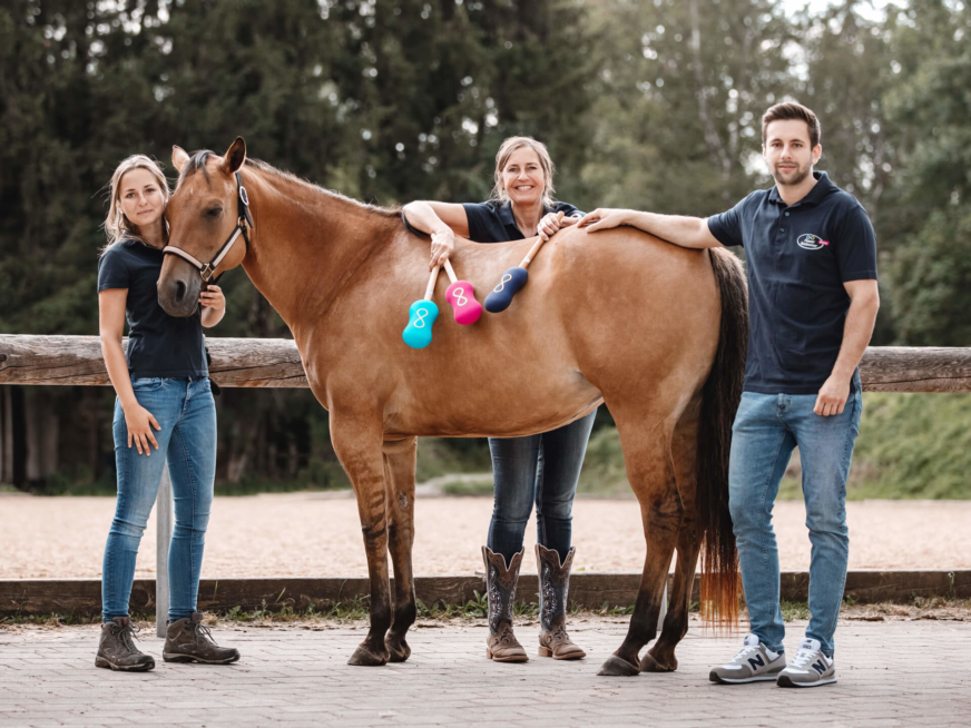 Tiertherapiegeräte Mergen Knop Medizintechnik Modulas Touch Infrarotlaser