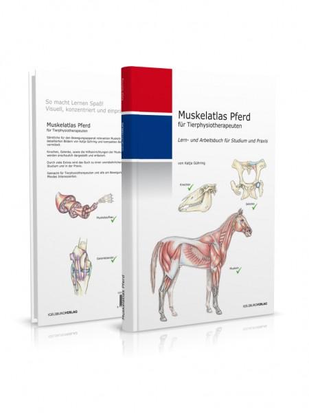 Muskelatlas Pferd